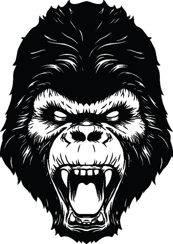Ape gorilla head