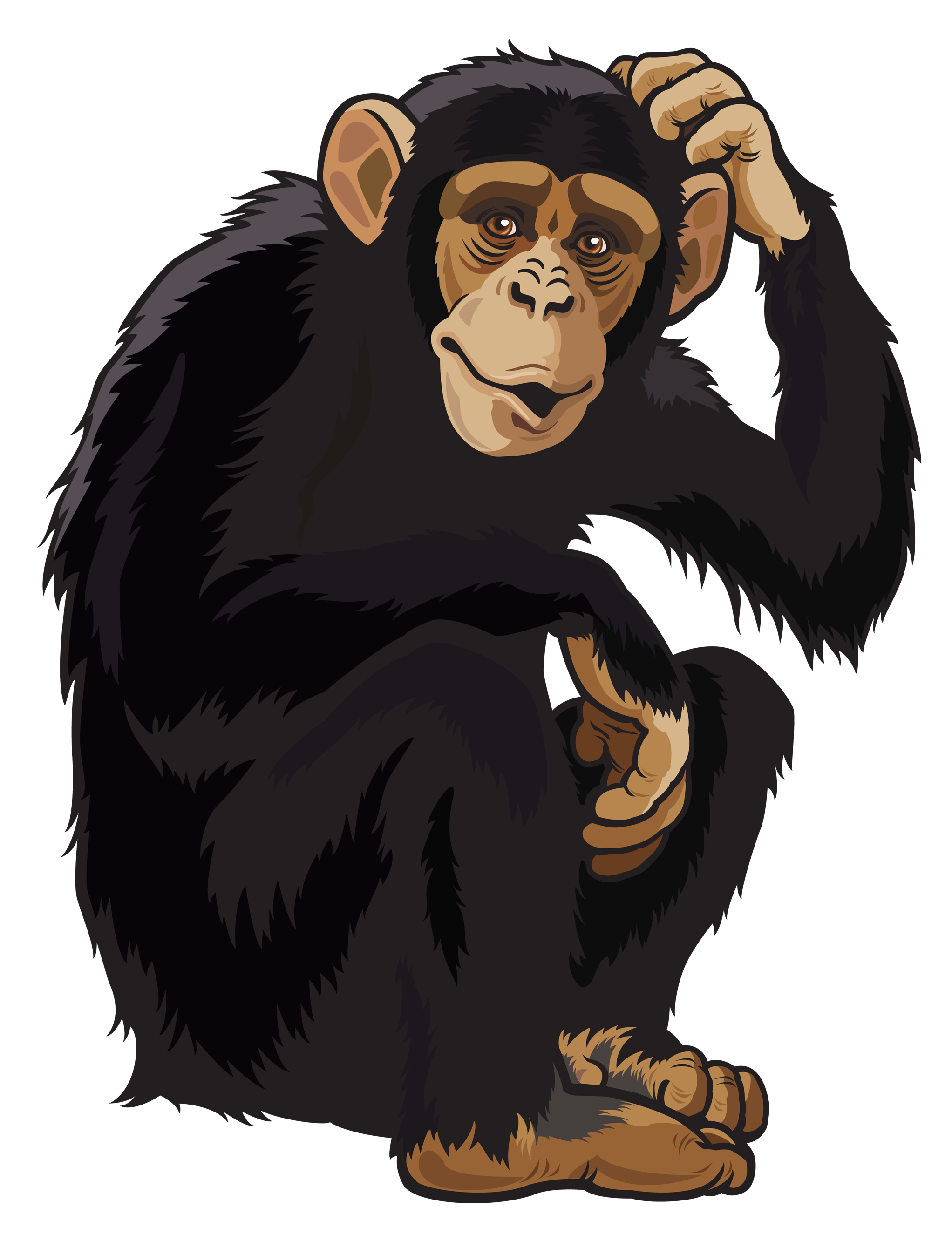Clipart animals monkey. Png image gallery yopriceville
