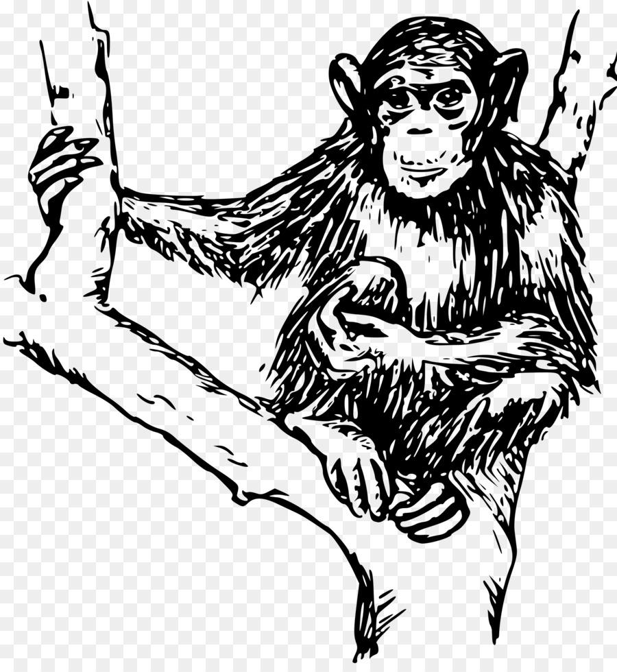 Ape monky