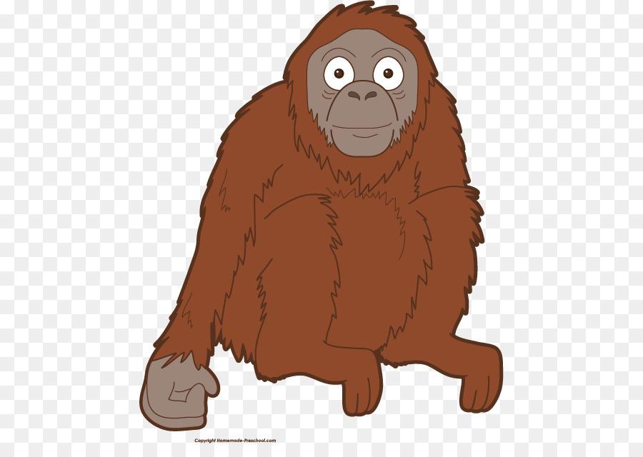 Gorilla bornean baby primate. Ape clipart orangutan