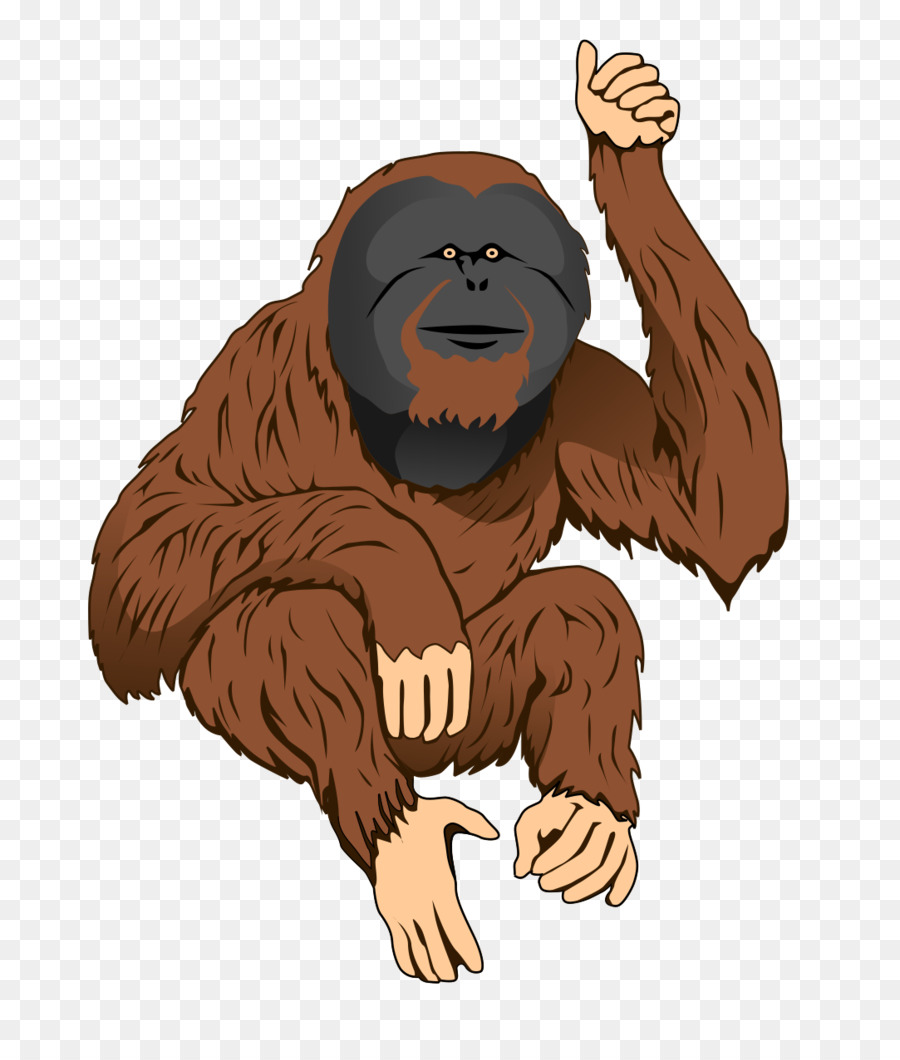 Ape clipart orangutan. Bornean sumatran clip art