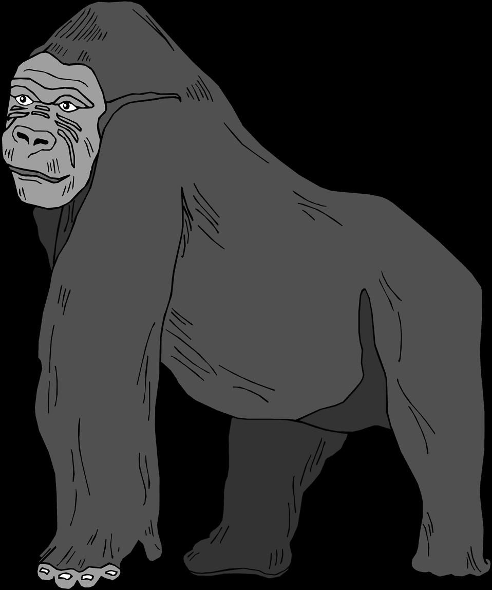 Free clipartxtras top. Clipart eye gorilla
