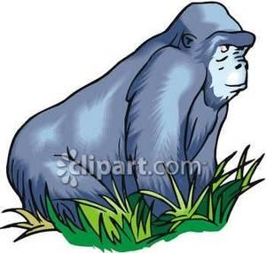 Ape clipart silverback gorilla. A mountain royalty free