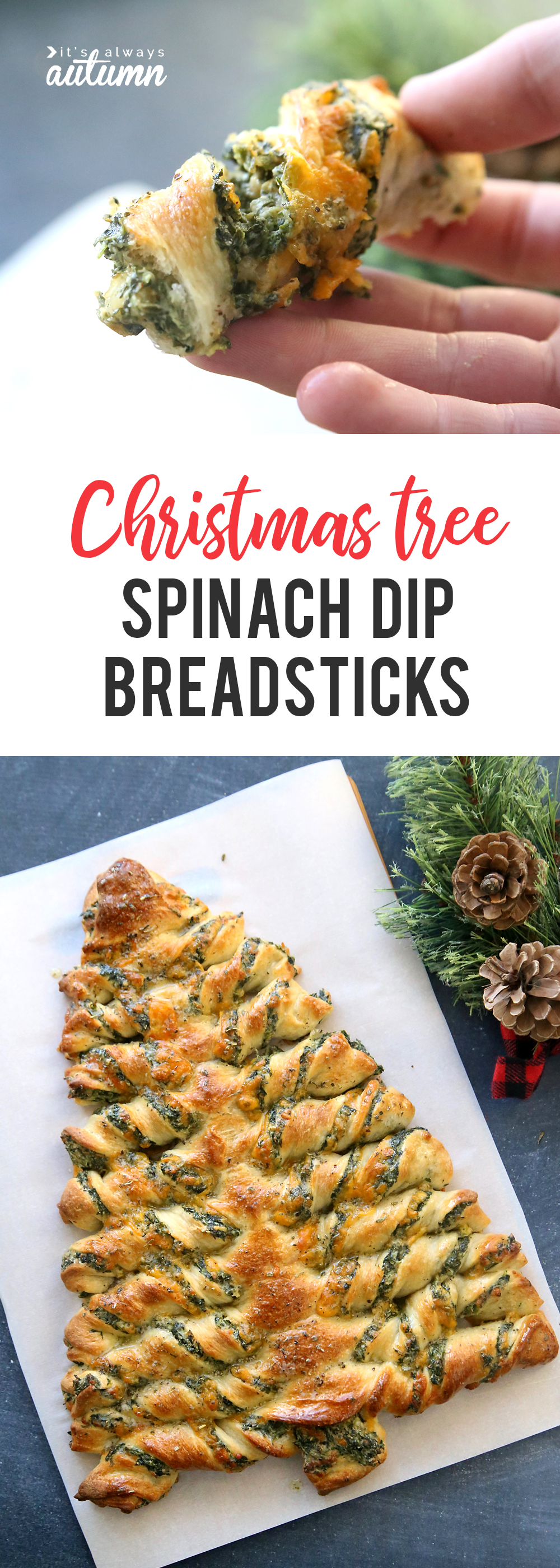 Christmas tree breadsticks it. Appetizers clipart spinach dip