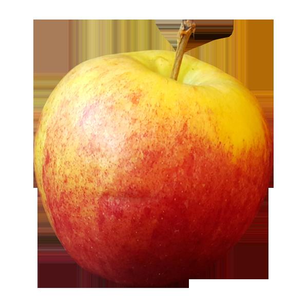 Apple transparent. Food clipart background image