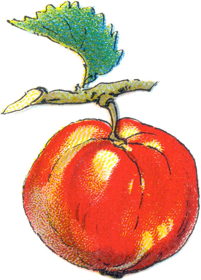 Free apple clip art. Apples clipart kid