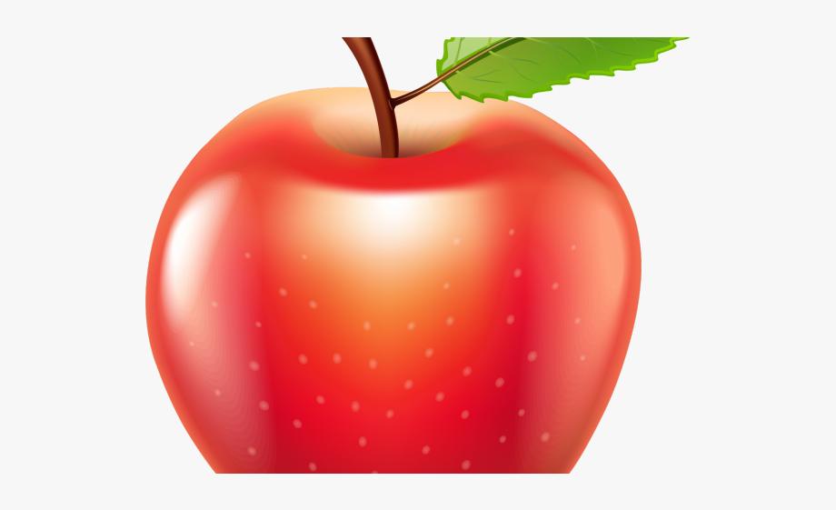 Apple fruit . Fruits clipart transparent background