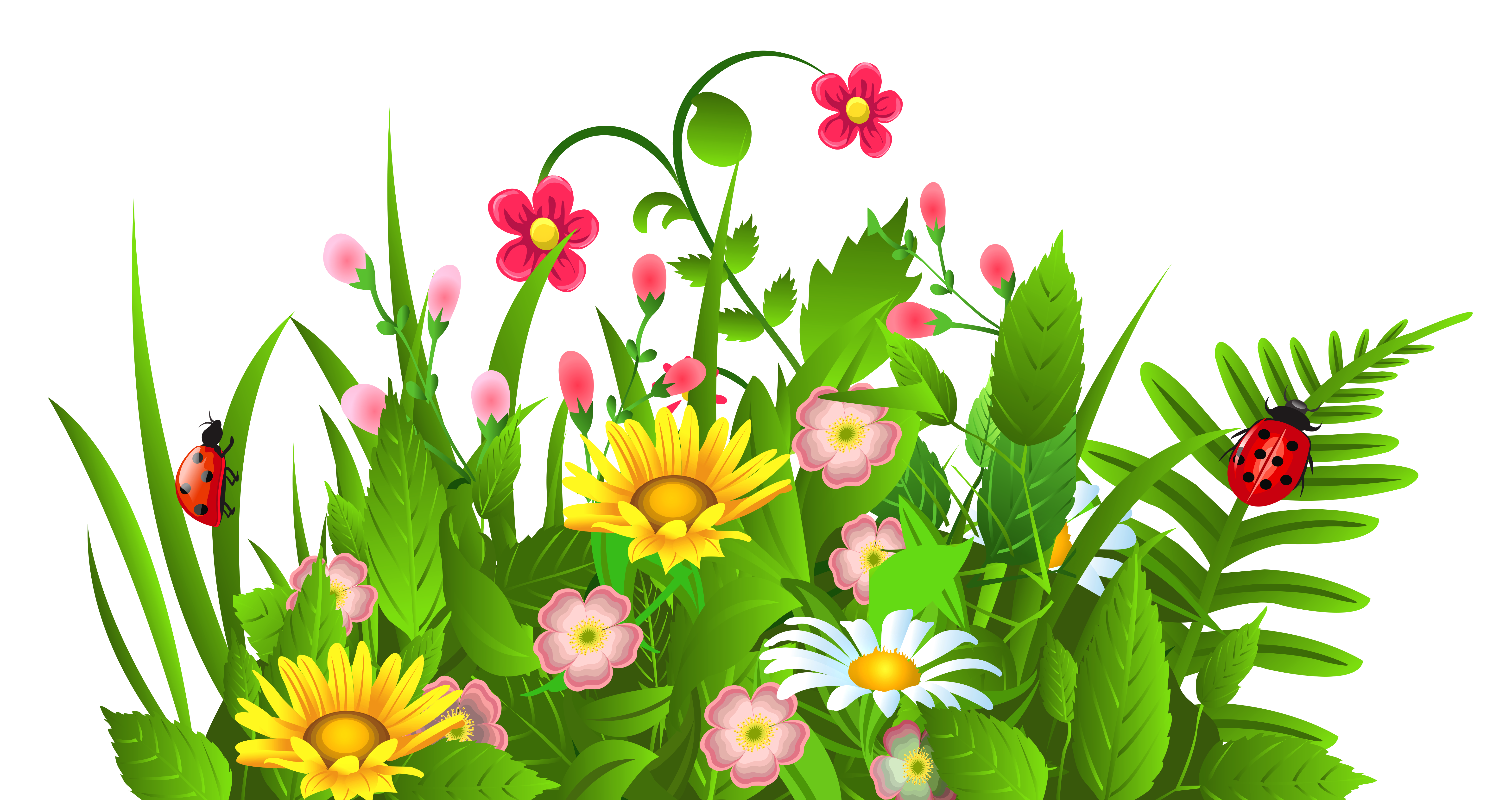 Cute grass and flowers. Poppy clipart 5 flower
