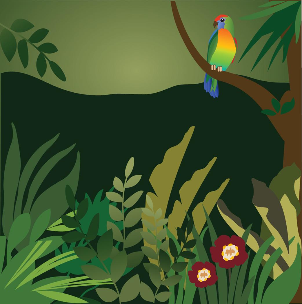 Rainforest clipart rainforest habitat. Rain forest and beyond
