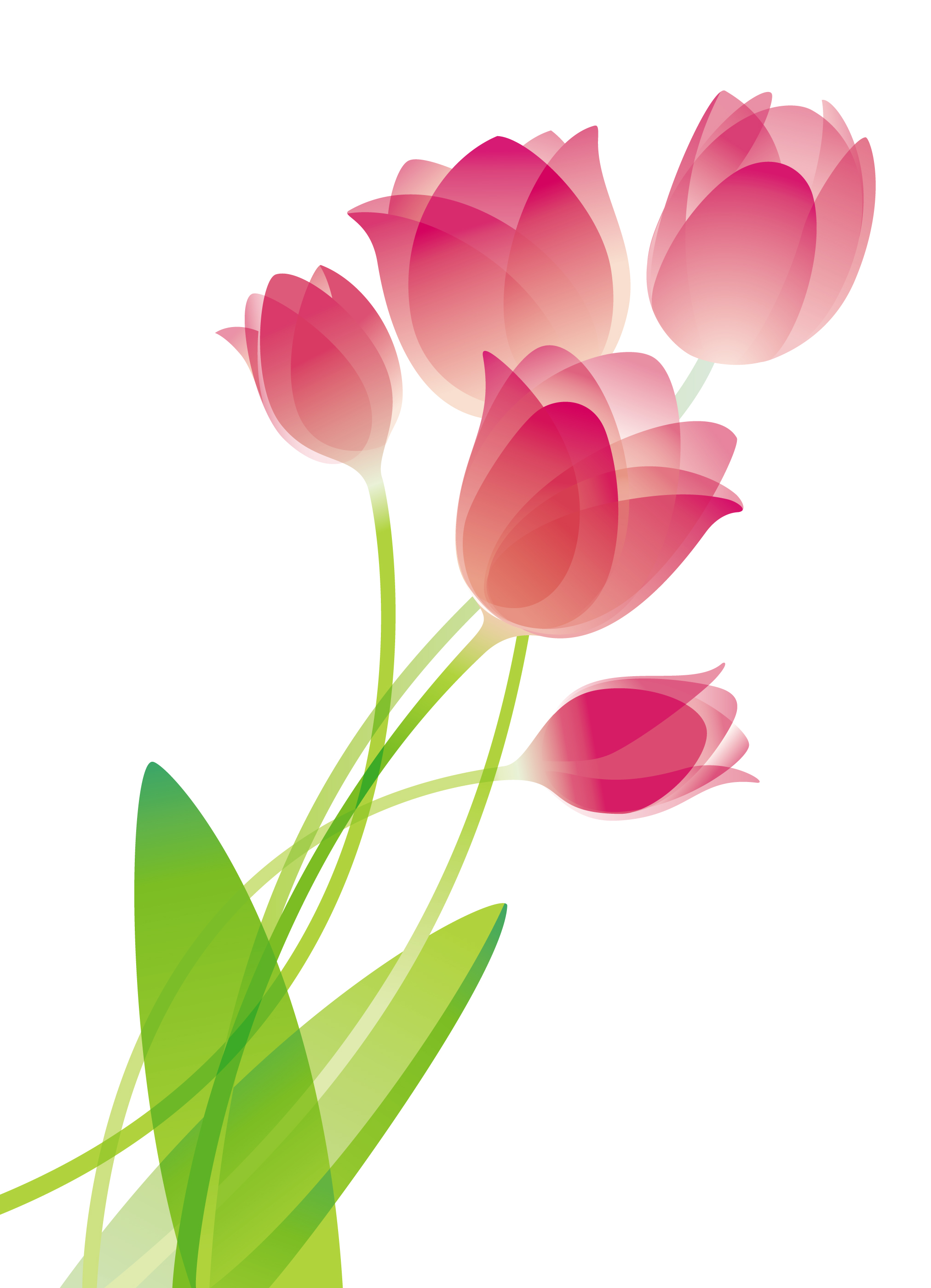 Upcoming events alameda county. April clipart tulip