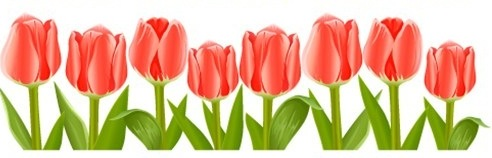 Free may clip art. April clipart tulip