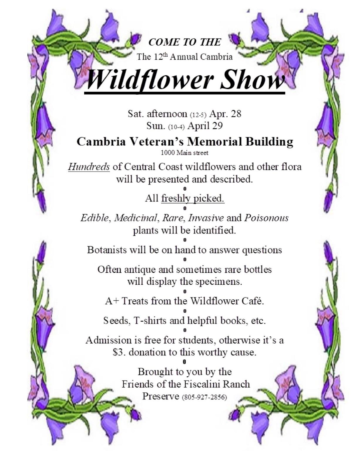 Cambria show morro coast. April clipart wildflower