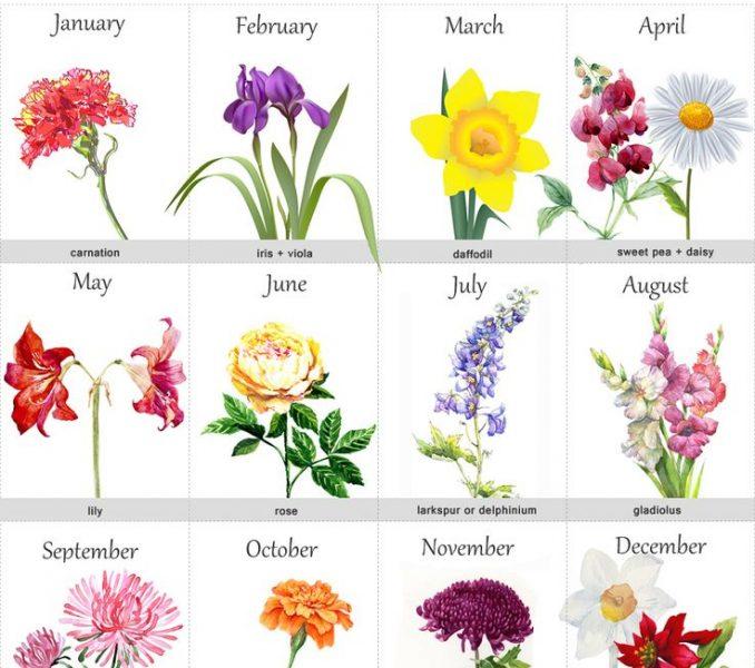 Flower tattoo beautiful counter. April clipart wildflower