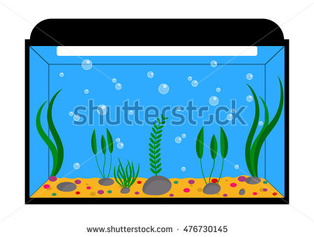 Aquarium clipart. Fish tank free download