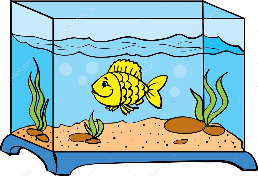 Aquarium clipart. Free download best on