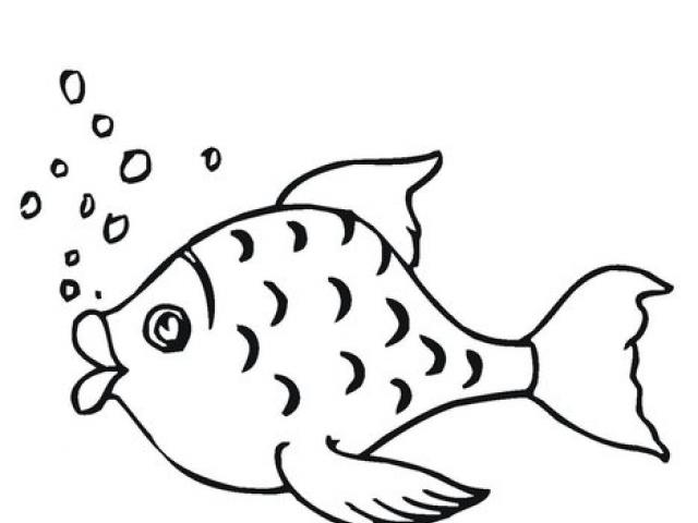 Breath clipart animal breathing. Free fish tank download