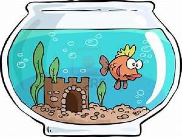 Free fish tank download. Aquarium clipart animated