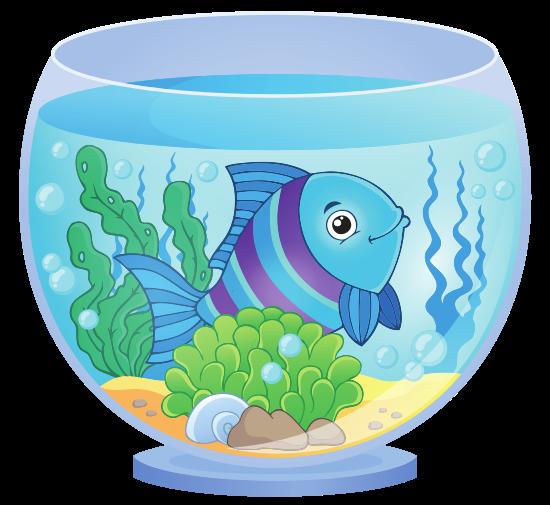 Aquarium clipart aquarium animal. Pet fish photos by