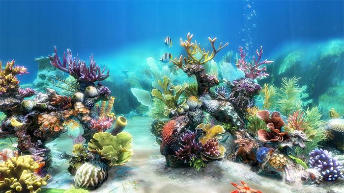 Aquarium clipart aquarium background. Printable fish tank incep