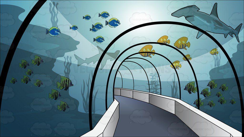 Aquarium clipart aquarium background. Tunnel through an backgrounds