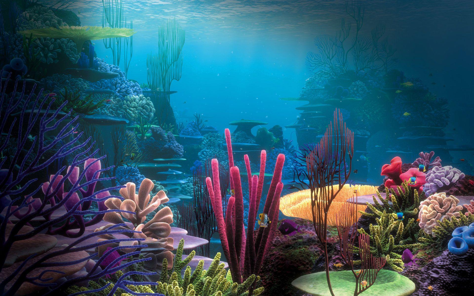 Empty backgrounds google search. Aquarium clipart aquarium background