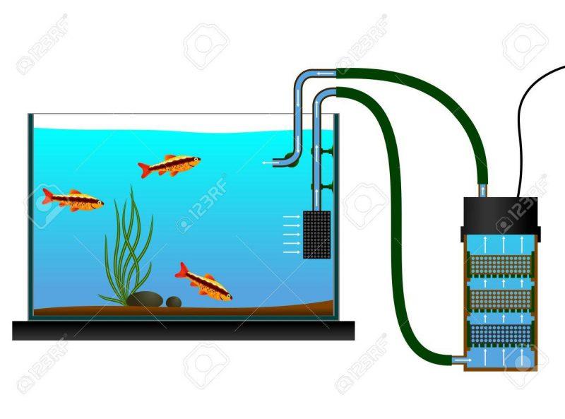 Fish tank external filter. Aquarium clipart aquarium design