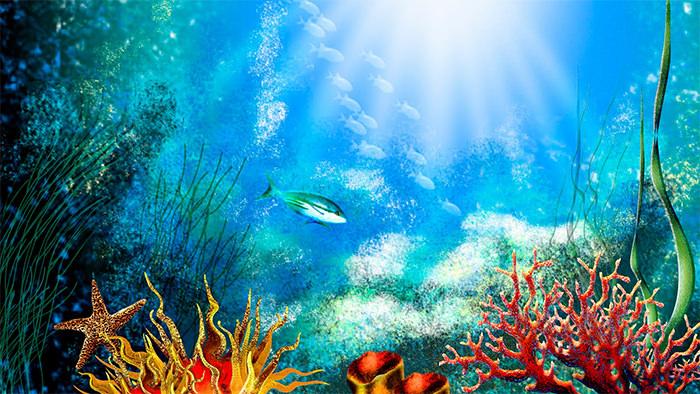 Aquarium clipart aquarium design.  best backgrounds to