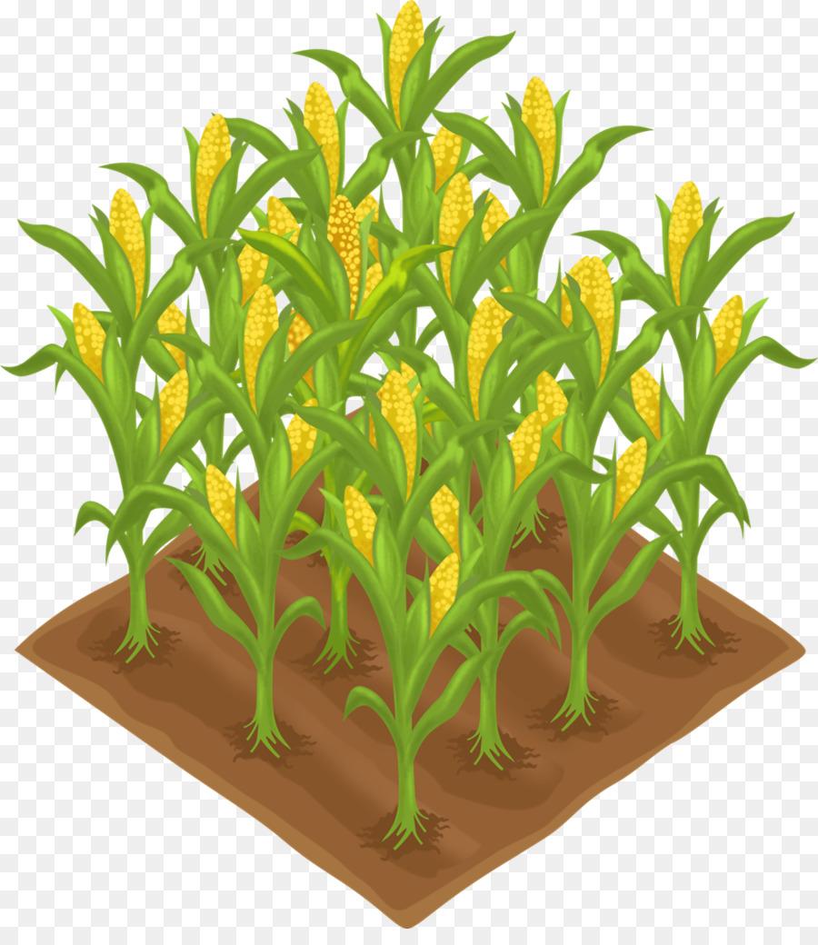 Crops clipart clip art. Crop agriculture farm field