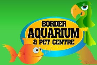 Aquarium clipart border. And pet centre albury