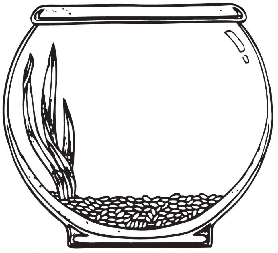 Fish tank use the. Bowl clipart draw