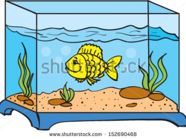 Aquarium clipart clip art. Fish tank free on