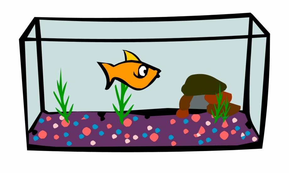 Aquarium clipart clip art. Png free images