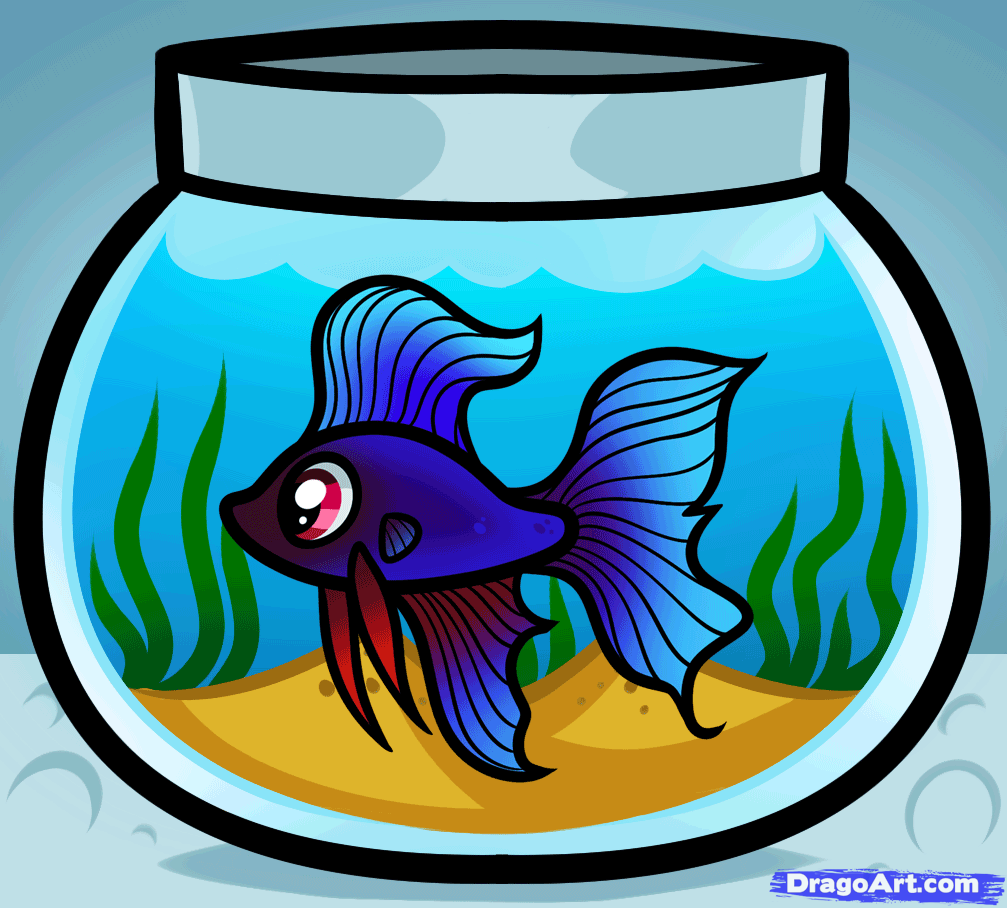 How to draw a. Aquarium clipart drawing