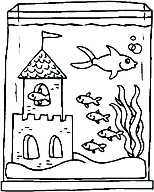 Aquarium clipart drawing. For kid free download