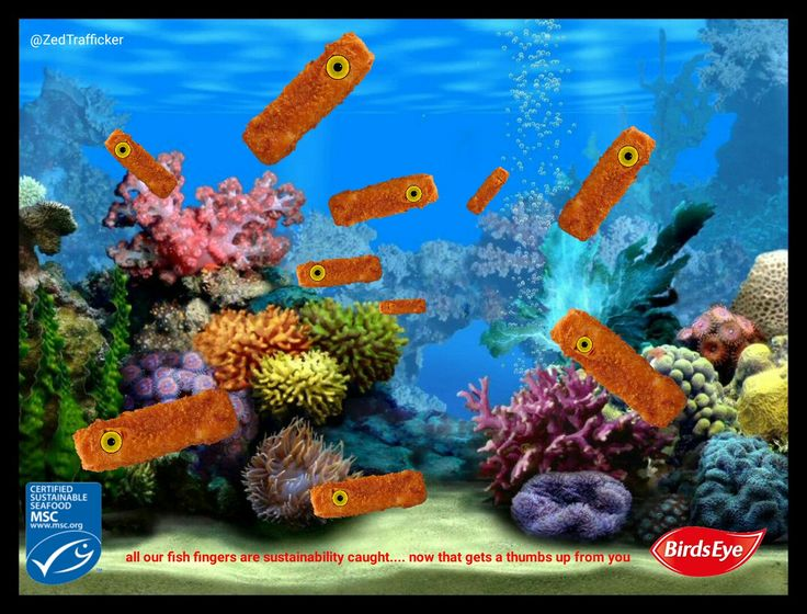 best fish tank. Aquarium clipart empty square aquarium