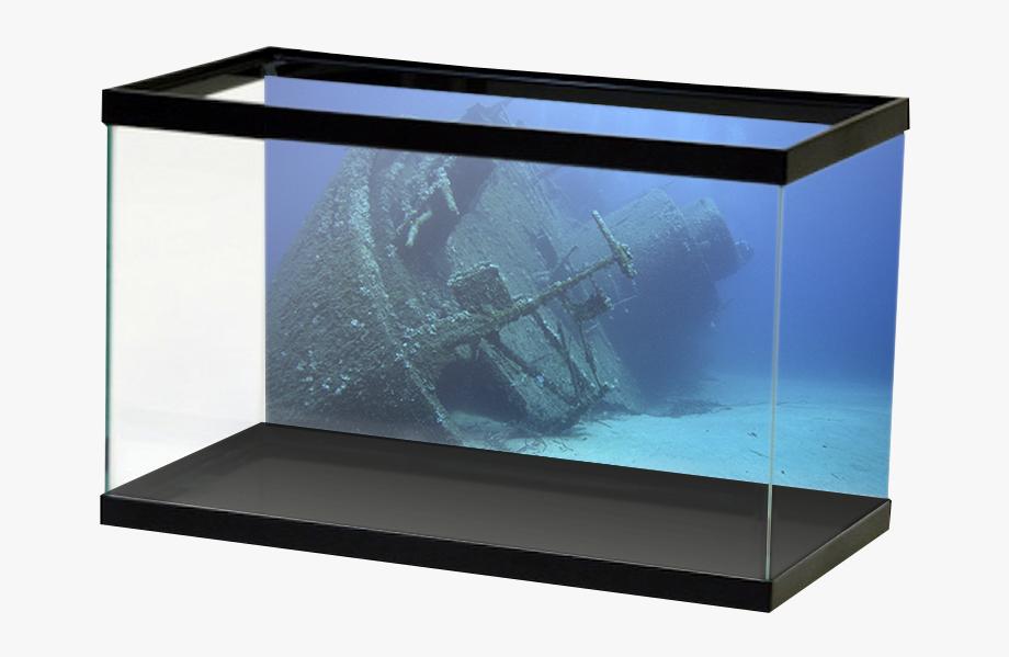 Aquarium clipart fish bowl. Tank shipwreck decorations