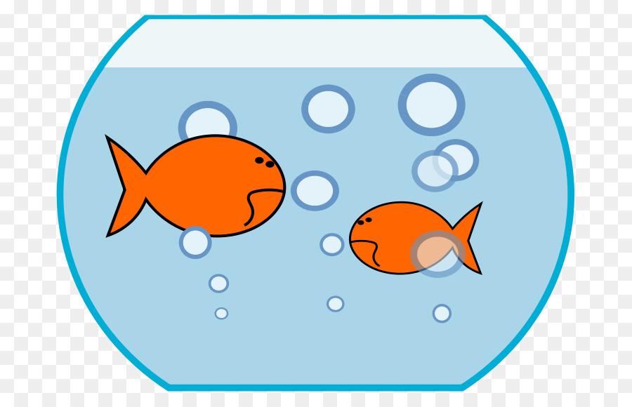 Carassius auratus clip art. Aquarium clipart fish bowl