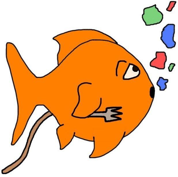 What do eat choosing. Goldfish clipart goldfish food