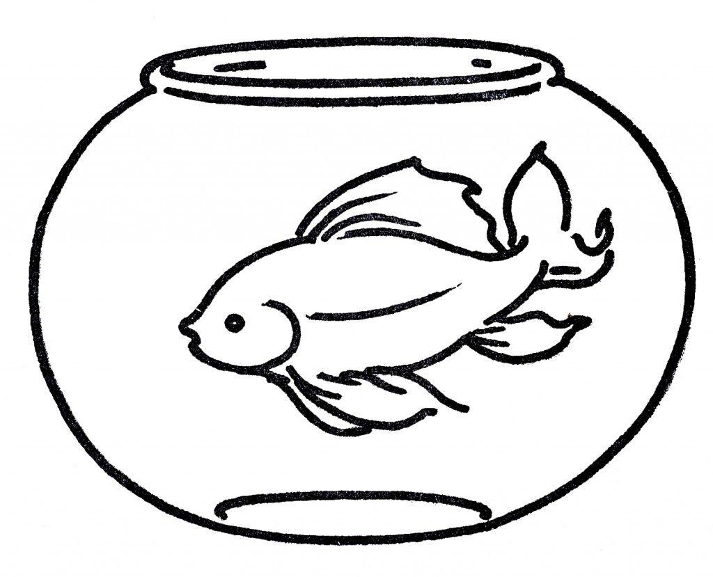 Free in line art. Aquarium clipart goldfish bowl