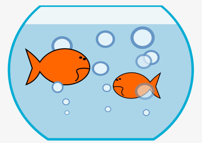 Two small fish of. Aquarium clipart goldfish bowl