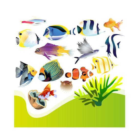 Clip art . Aquarium clipart handmade