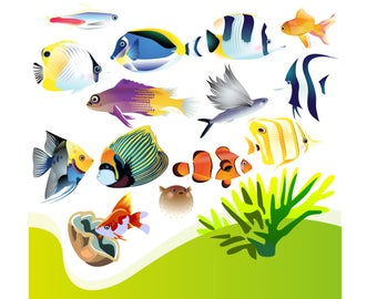 Aquarium clipart handmade. Etsy