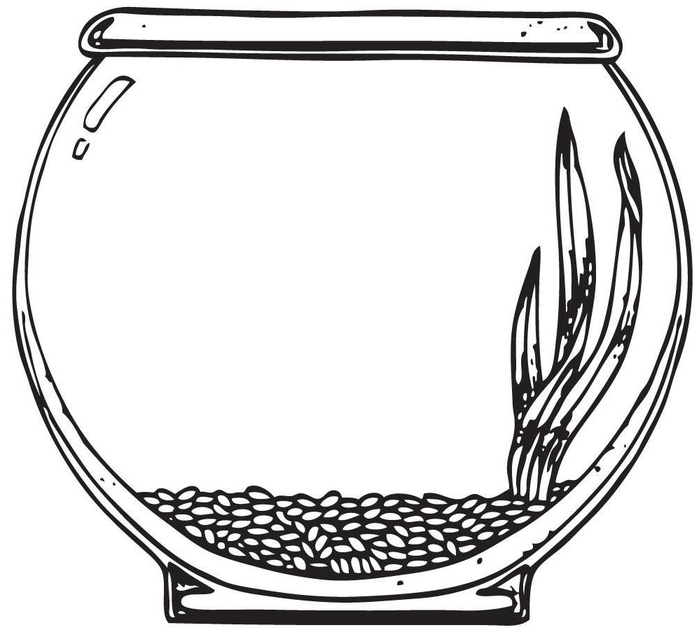 Fish tank excellent pictures. Aquarium clipart outline
