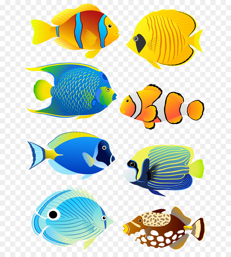 Aquarium clipart pet fish. Tropical angelfish clip art