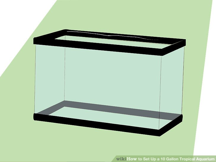 Aquarium clipart rectangle. How to set up