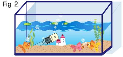 Aquarium clipart rectangle. Cilpart sumptuous design inspiration