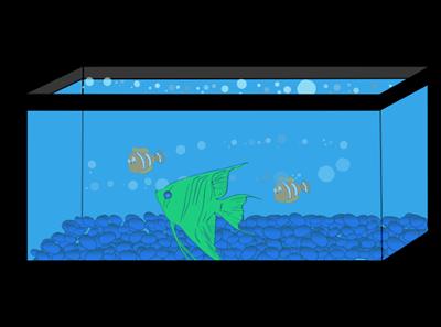 Wall fish tank . Aquarium clipart rectangle