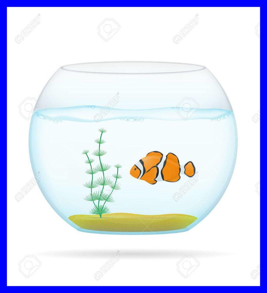 Amazing fish in a. Aquarium clipart transparent