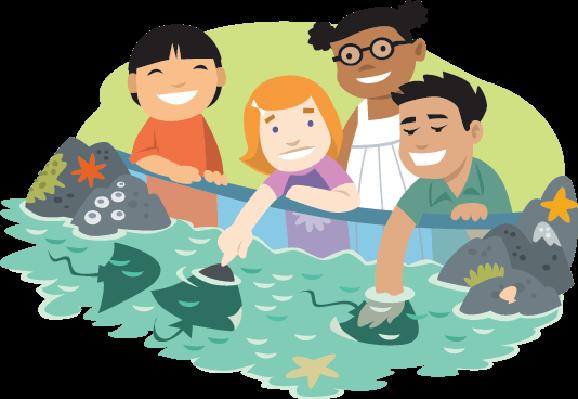 Kids the arts image. Aquarium clipart transparent