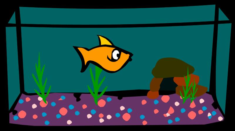 Aquarium clipart transparent. Download free png image